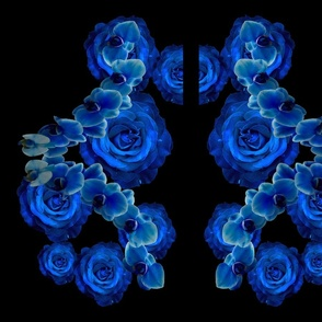 Blue rose/orchid back + front
