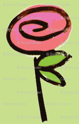 lucky rose - green/pink