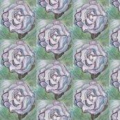 Rwhite_rose_original_shop_thumb