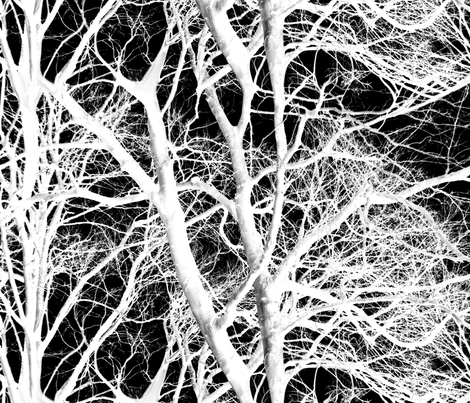 The Tree Lace ~ White and Black