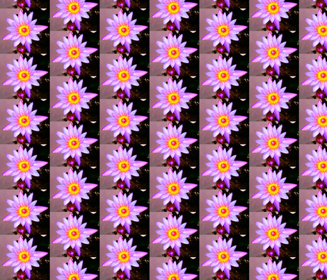 Hawaiian Lotus Blessings fabric by hrhsf-sisterface-designs on Spoonflower - custom fabric