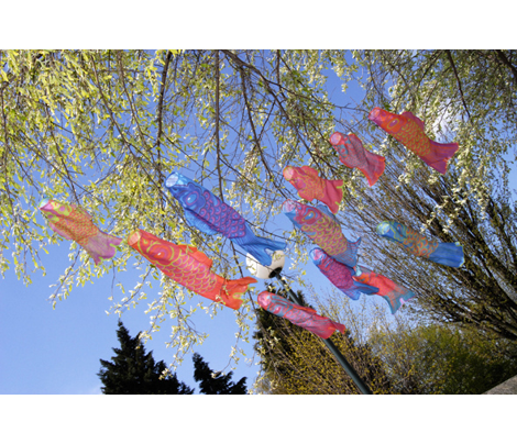 Koinobori_sew_and_cut_comment_288015_preview