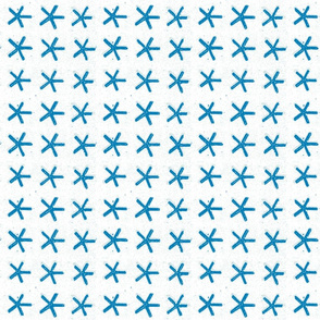 carolina star - marina