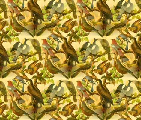 Farmhouse Birds Art fabric by telden on Spoonflower - custom fabric