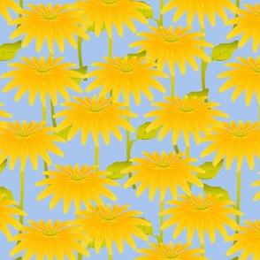Yellow Flower on Blue