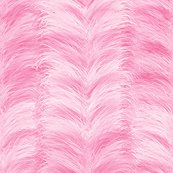 Rrfeather_stripe_hdr_pink_shop_thumb