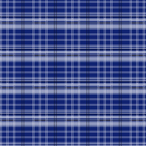 Police Box Plaid 4 v1