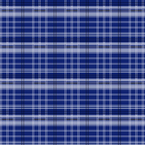 Police Box Plaid 4 v2