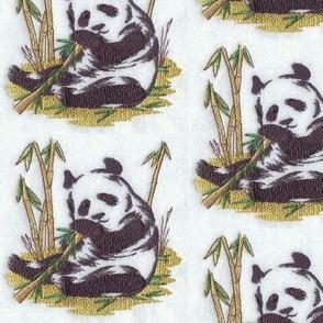 oriental_panda