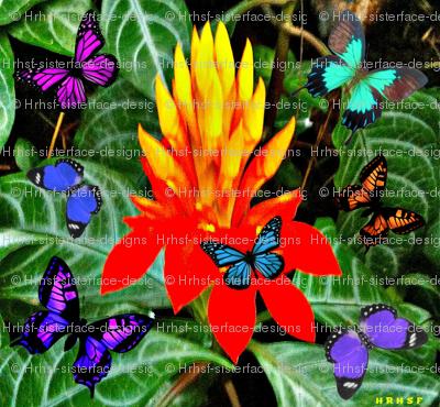 Starburst Flower & Butterflies