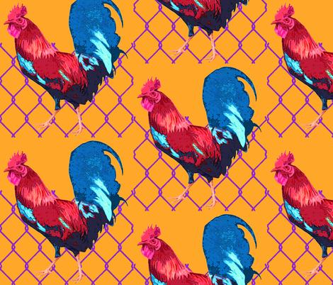 Rooster_Pop