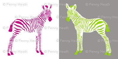Baby Zebras Play Chess in Wonderland