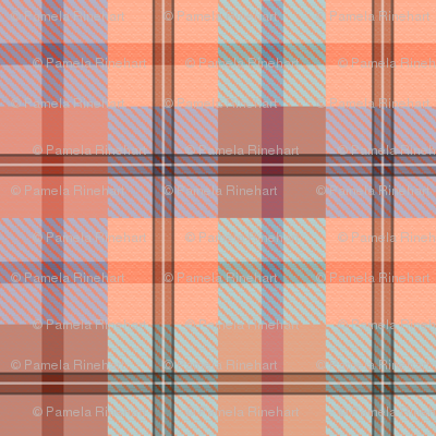 gingham plaid sea peach