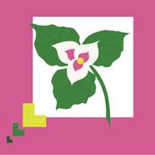 wild flower_trillium_pillow_front-ed
