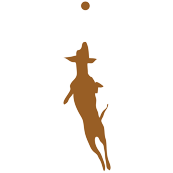 Brown Dog with Ball 15x15