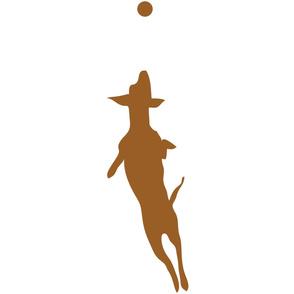 Brown Dog with Ball 30x30