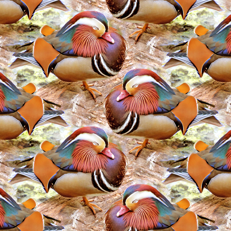 Mandarin Duck fabric by eclectic_house on Spoonflower - custom fabric