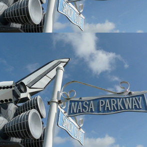 NASA Parkway fat quarter