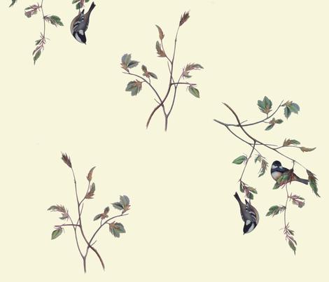 Finches on Cream fabric by jabiroo on Spoonflower - custom fabric