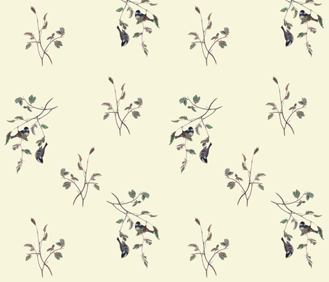 Finches on Cream fabric by jabiroo on Spoonflower - custom fabric
