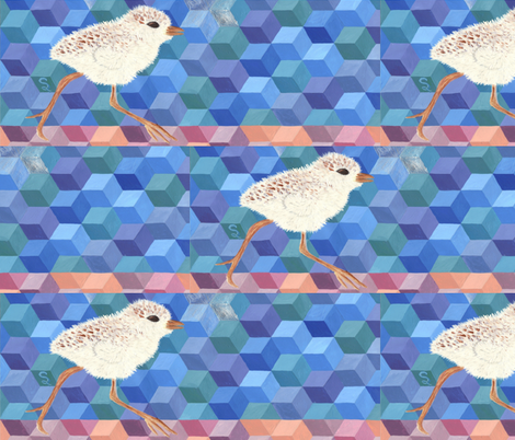Snowy Plover Chick fabric by thecameronquinn on Spoonflower - custom fabric
