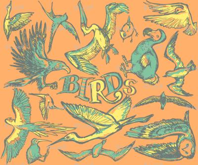 Birds_oranje