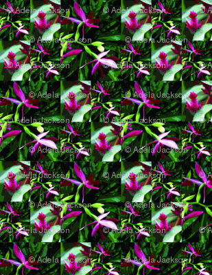 Orchid_Quilt