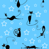 cats and stars 