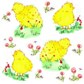 Spring Chicks