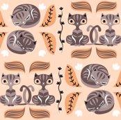 Rrrrrcats_shop_thumb