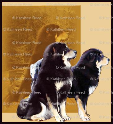 Tibetan Mastiff Guardians