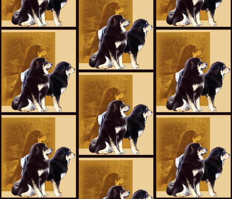 Rtibetan_mastiff_grouping_shop_preview