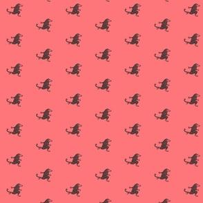 Henry possum