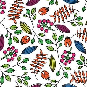 Berries & Bugs