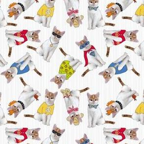 Kookie Kittens