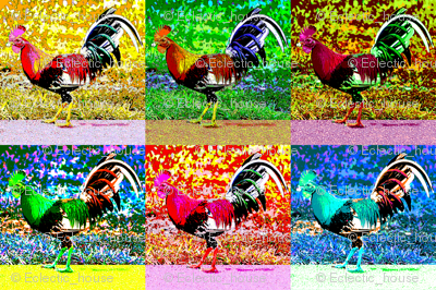 Poppycock Rooster