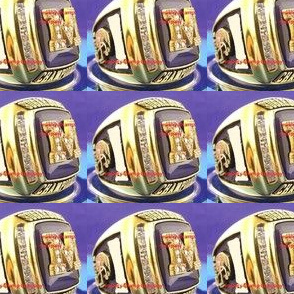 2011 Michigan Championship Ring