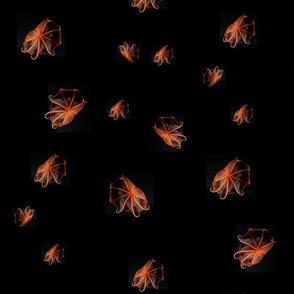 Squidflowerdots