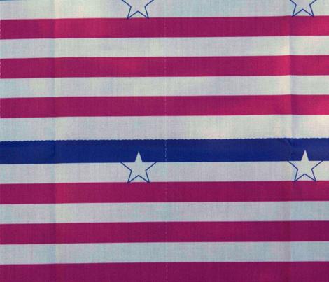 Retro Americana Napkin