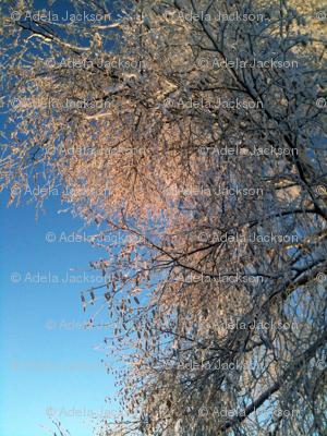 Snow_Trees