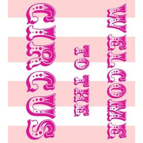 Circus Flag, pink on pink