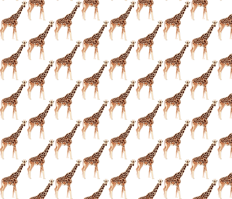 Giraffe fabric by terriaw on Spoonflower - custom fabric
