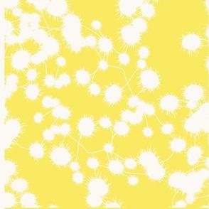 Anemone Yellow