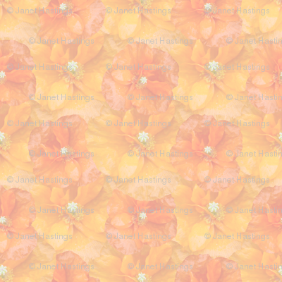 muted_orange_poppy_seamless