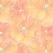 Muted_orange_poppy_seamless_shop_thumb