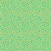 Heidi Dot Green