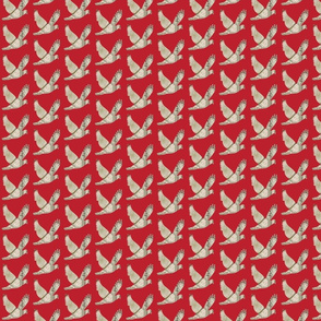 Parisian  Dove french country red