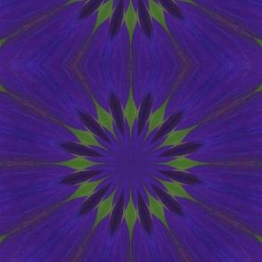 Kaleidescope 3434 v.5
