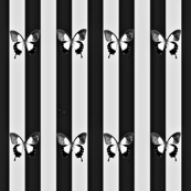 Black and White Pinstripe Butterflies-ed