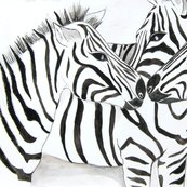 Zebras_12_by_geaausten-d60r4f8_t_shop_thumb